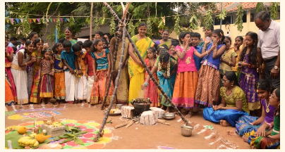 Celebration of Pongal across Different Region of the country