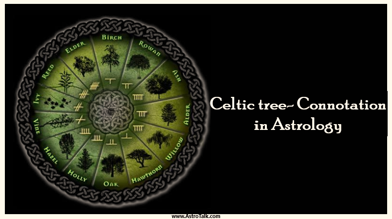 Celtic tree- Connotation in Astrology