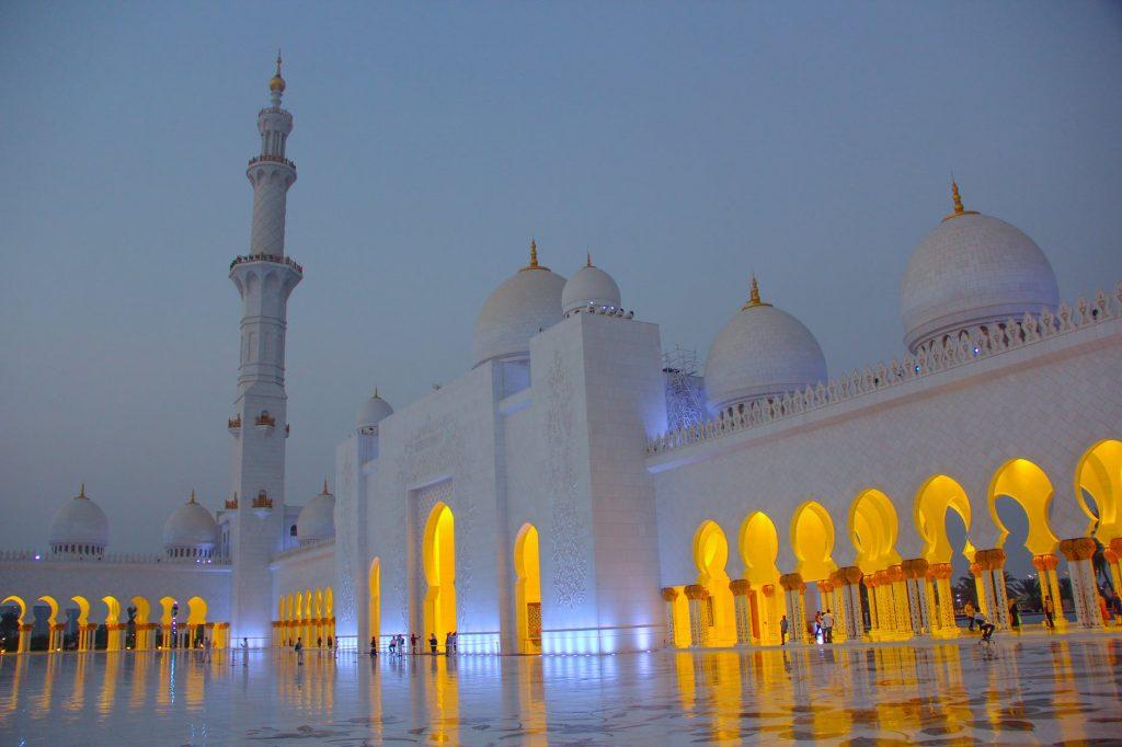 UAE for LEO