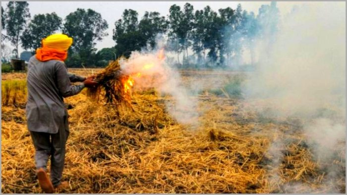 Why do farmers burn stubble? the words of farmers