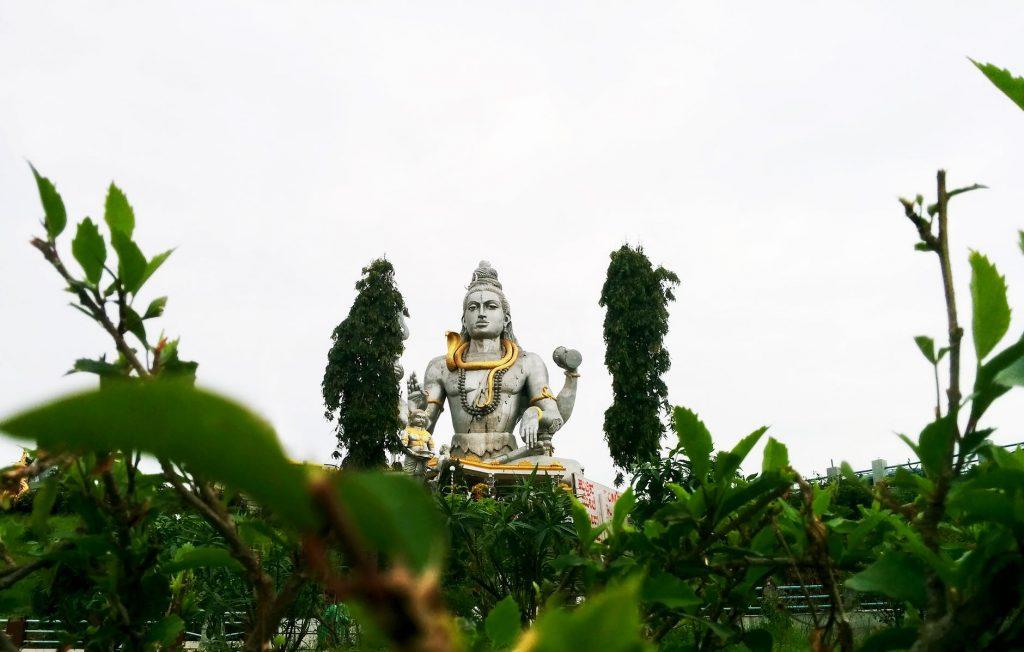 Kaal Sarp Dosha remedies