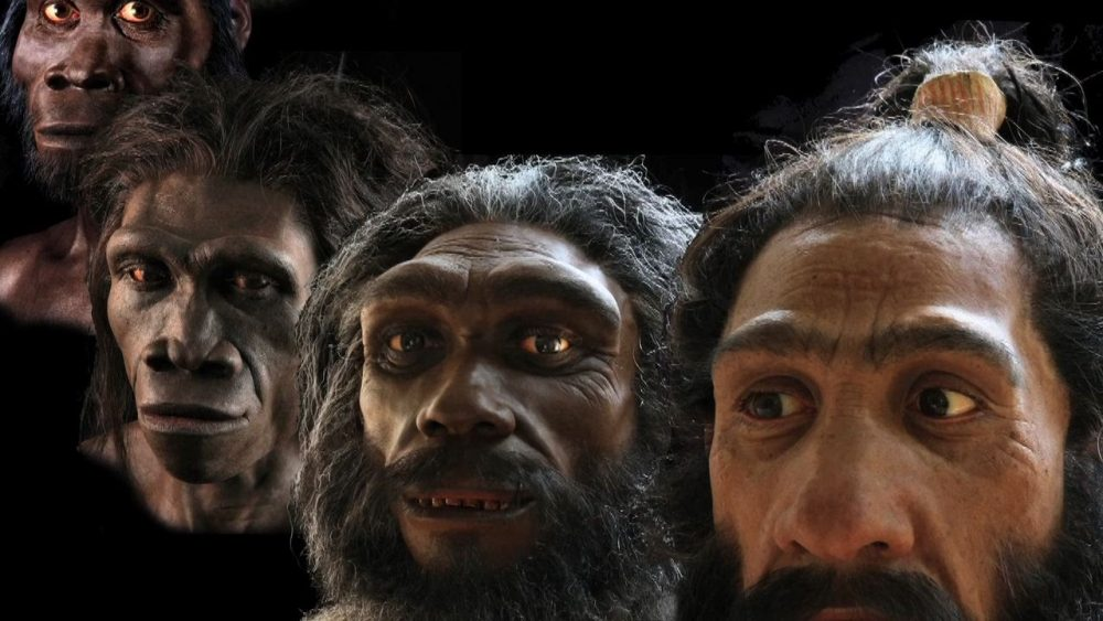 "Hidden Mystery Behind ""Human Evolution"""