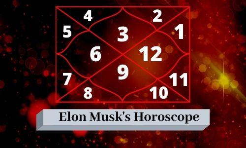 Elon Musk Birth Chart