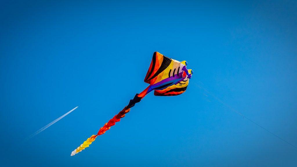 Makar Sankranti  2020  kites