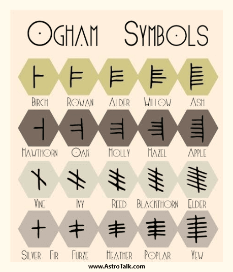 Rundown of the Celtic Ogham System of Wisdom