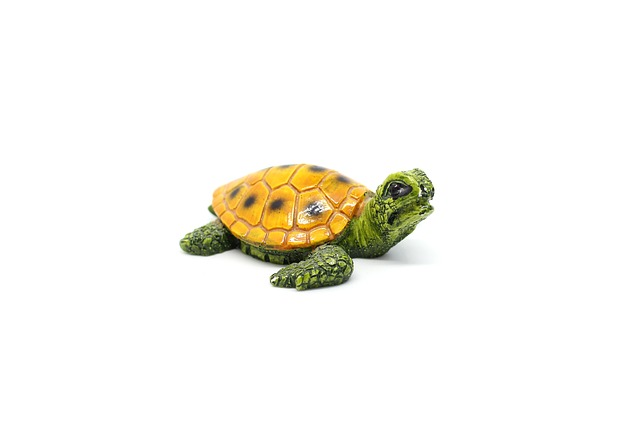 Statue Of A Turtle For Vastu