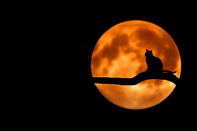 Some popular Superstitions around the world