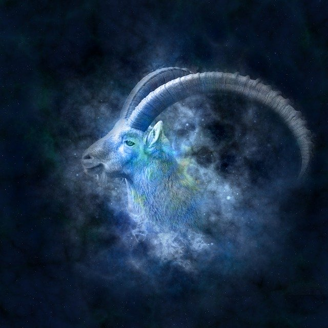 Capricorn (22nd December to 19th January)