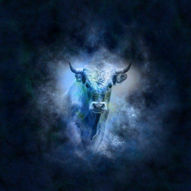 Taurus (20th Apr-20th May)