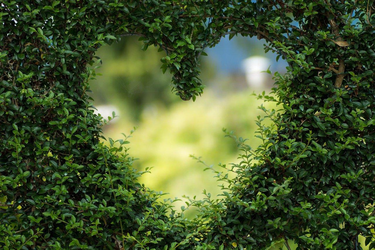 ज्योतिष में राशि के अनुसार प्यार कैसे ढूंढे?